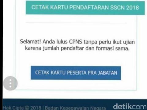 Lolos Administrasi CPNS Tak Perlu Ikut Ujian, BKN: Tidak Benar!