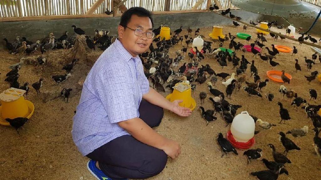 Taman Teknologi Pertanian Kementan Dongkrak Perekonomian Desa