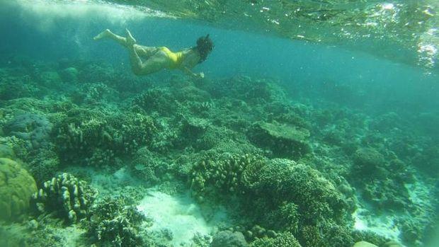 Ini Paket Wisata Alam Lengkap Buat Liburan di Sulawesi Selatan