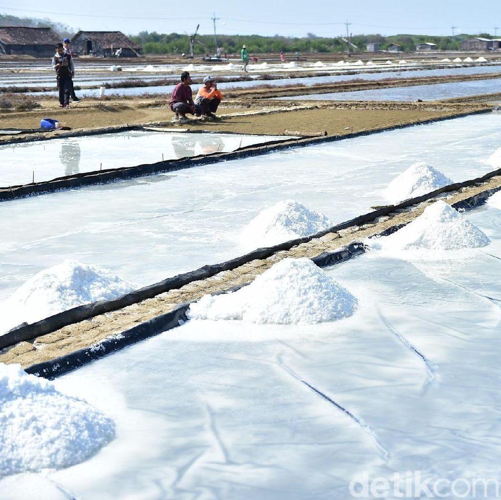 Produksi Garam di Lamongan Lampaui Target, Ini Inovasinya