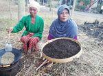 Kecamatan di Pasuruan Didorong Bikin Kampung Wisata Kopi