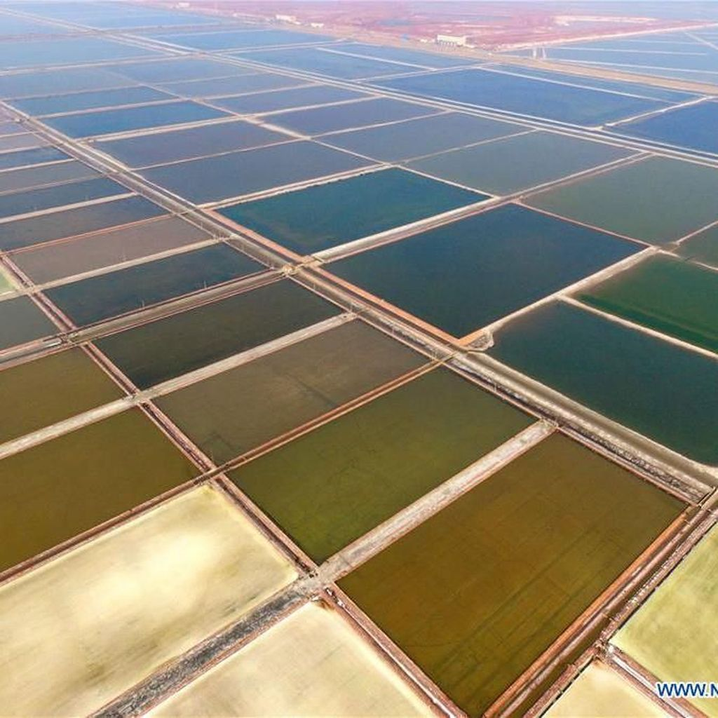 Penampakan Tambak Garam Raksasa di China