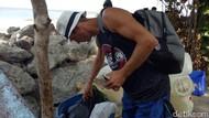 Ini Alasan Bule yang Viral Mengais Makanan dari Sampah di Bali