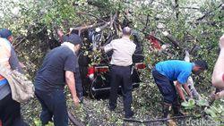 Pohon Beringin Tumbang Menimpa Mobil di Depan Sriwedari Solo