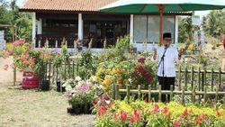 Rumah Using di Banyuwangi Dibangun untuk Pusat Aktivitas Pertanian