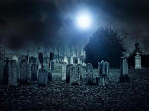 Dicari! Orang Pemberani yang Mau Menginap di Kuburan untuk Rp 3,9 Juta