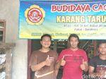 Geli-geli Seru, Karang Taruna Surabaya Budidaya Cacing Beromzet Jutaan
