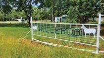 Perusahaan Indonesia Raup Untung dengan Menjual Peternakan di Australia