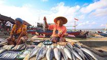 Wilayah Perairan Ini Jadi Penghasil Ikan Terbesar di Indonesia