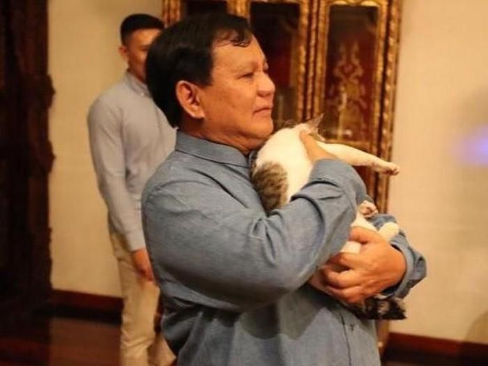 Prabowo dan Bobby The Cat (Instagram Prabowo)