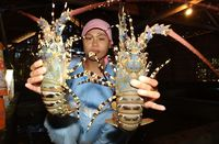 5 Daerah di Indonesia Ini Punya Lobster Enak Berdaging Tebal