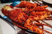 Bukan Roti, 'Burger' Isi Bacon Ini Diapit Lobster Goreng Tepung!