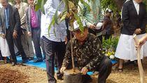 Ini Cara DPD RI Wujudkan Hutan Lestari
