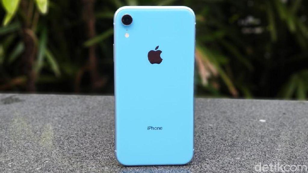 Apple Rayu Pengguna iPhone Lama Upgrade ke XR