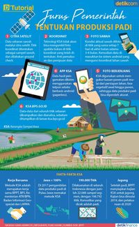 Kerangka Sampel Area, metode baru tentukan jumlah produksi padi