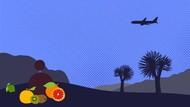Kisah Parfum di Kabin Pesawat yang Anda Belum Tahu