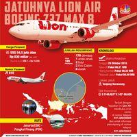 Tidak Dipecat, Menhub Sebut Direktur Lion Air Dibebastugaskan