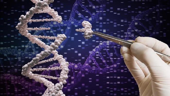 Siapa ayah biologis seseorang bisa dikonfirmasi lewat tes DNA (Foto: iStock)