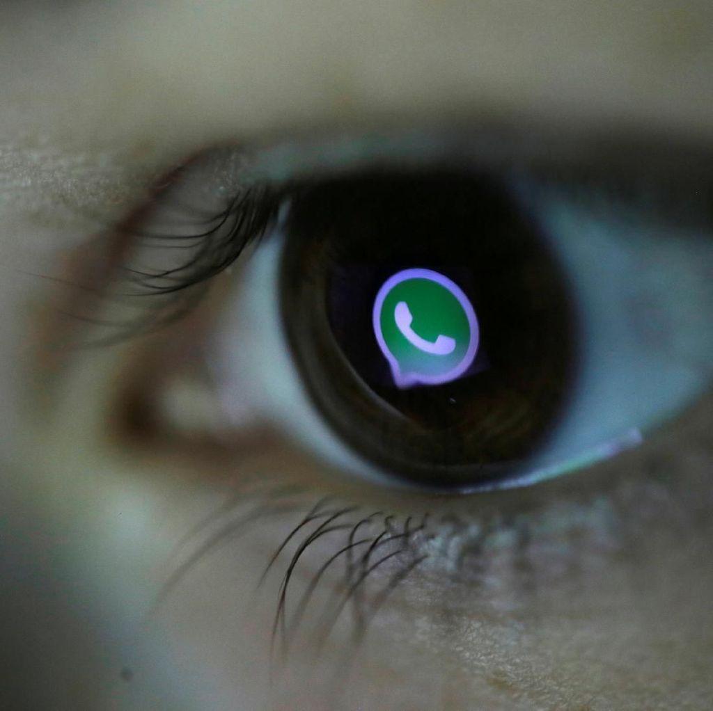 Pembatasan Forward Pesan WhatsApp Efektif atau Tidak?