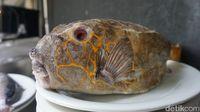 Ini 3 Ikan Makassar Paling Populer, Makin Enak Dimakan Bersama Sambal Khasnya