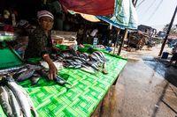 Jakarta Punya Banyak Pasar Ikan Modern Untuk Belanja Seafood Segar
