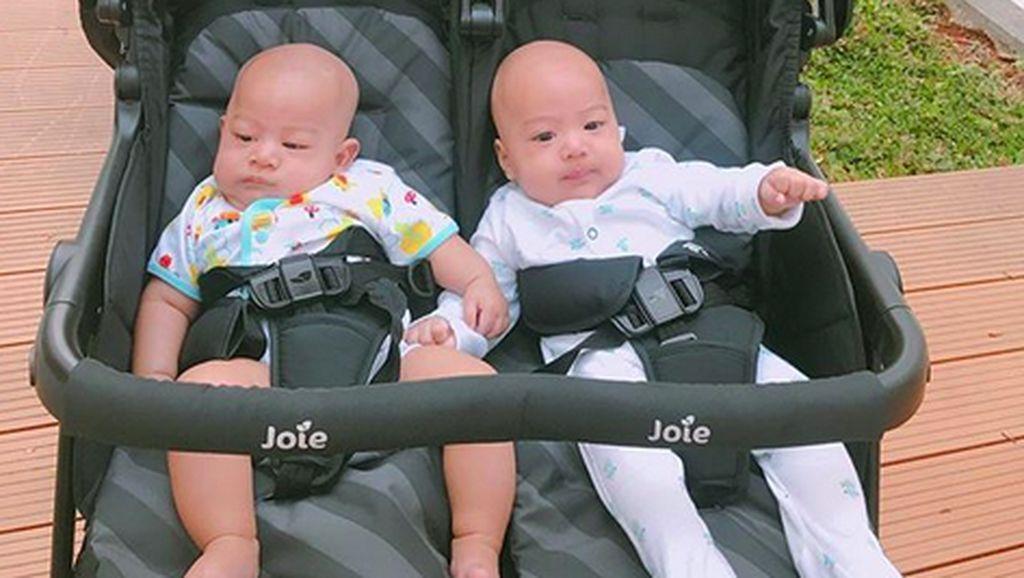 Kenalan dengan Anak Kembar April Jasmine, Si Duo Gembil