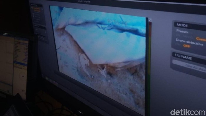 Tangkapan kamera ROV di dasar laut/Foto: Matius Alfons/detikcom