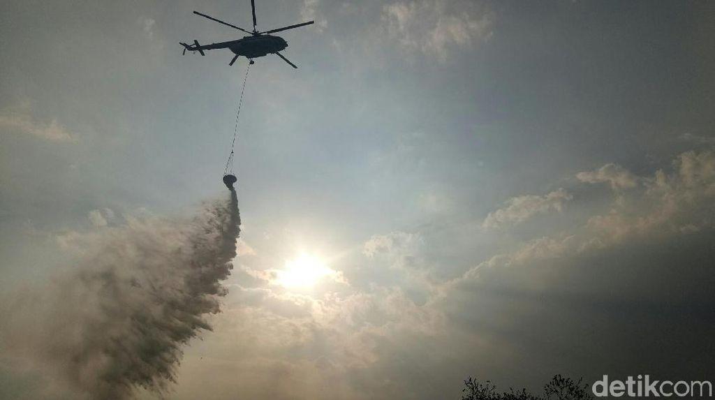 Kebakaran Hutan di Dekat Athena Yunani, Puluhan Orang Dievakuasi