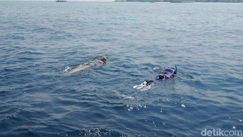 Keluarga Segera Bawa Pulang Jenazah WN Spanyol Tertabrak Boat Saat Snorkeling