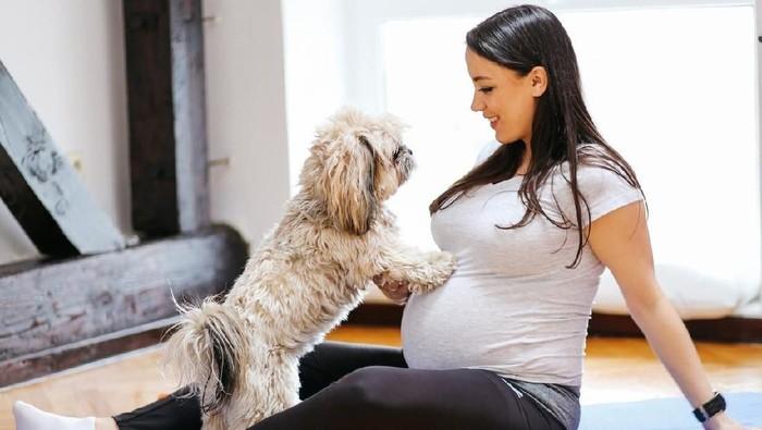 ilustrasi ibu hamil dan hewan peliharaan