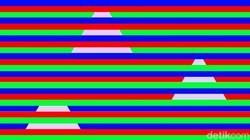 Warna juga bisa mengecoh otakmu, akibat refleks pengurangan cahaya dan warna latar belakang di sekitarnya. Apakah kamu bisa menebak yang satu ini?