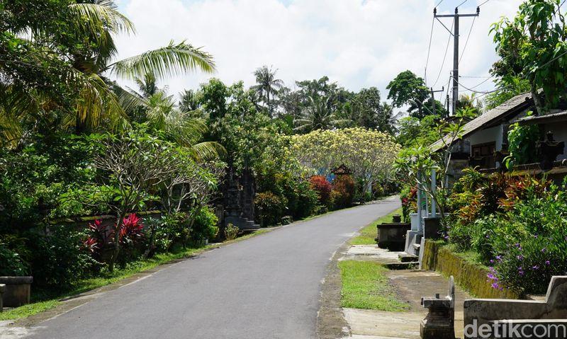 Inilah Desa Wisata Ekologis Nyambu di Kecamatan Kediri, Kabupaten Tabanan, Bali. Nama desa wisata ini memang belum terdengar gaungnya seperti desa yang lain. (Wahyu/detikTravel)