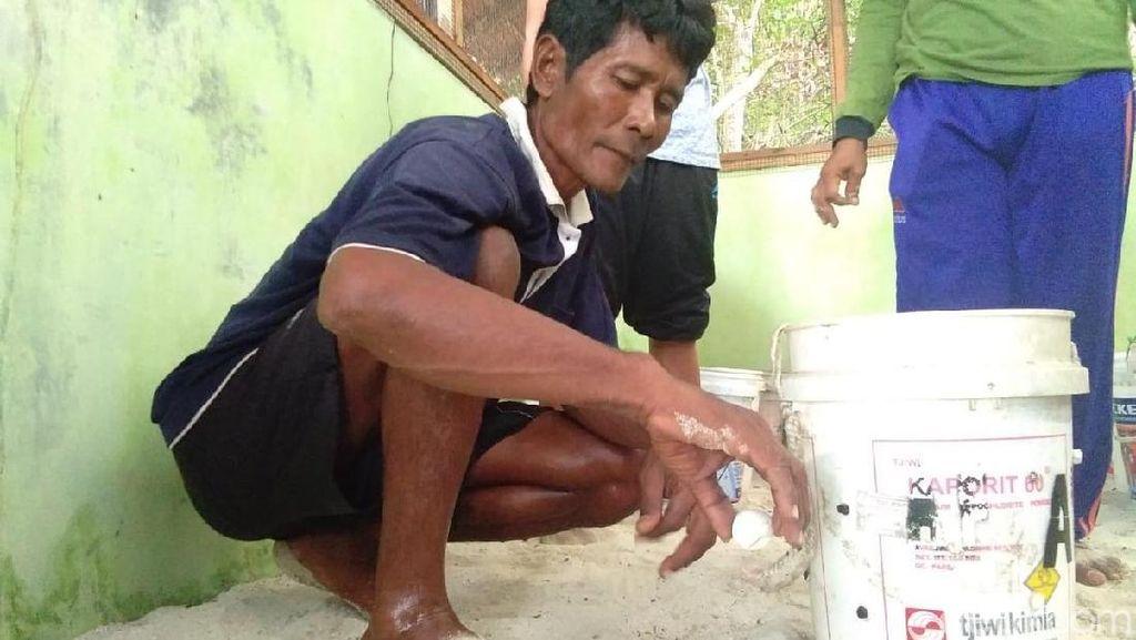 Mattobiin, Pemburu Telur Penyu untuk Konservasi di Karimunjawa
