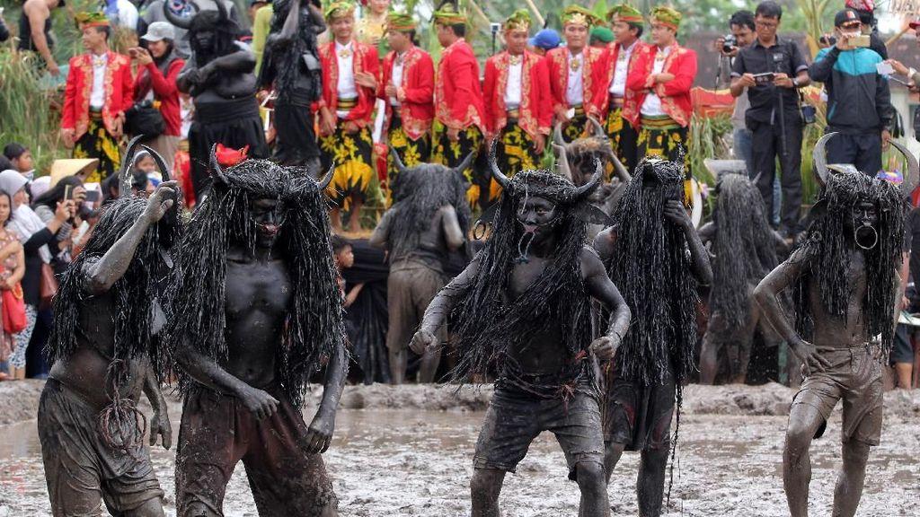Berkenalan dengan Tradisi Kebo-keboan Para Petani di Banyuwangi