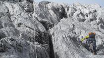 Foto: Beginilah Trek Pendakian Puncak Carstensz