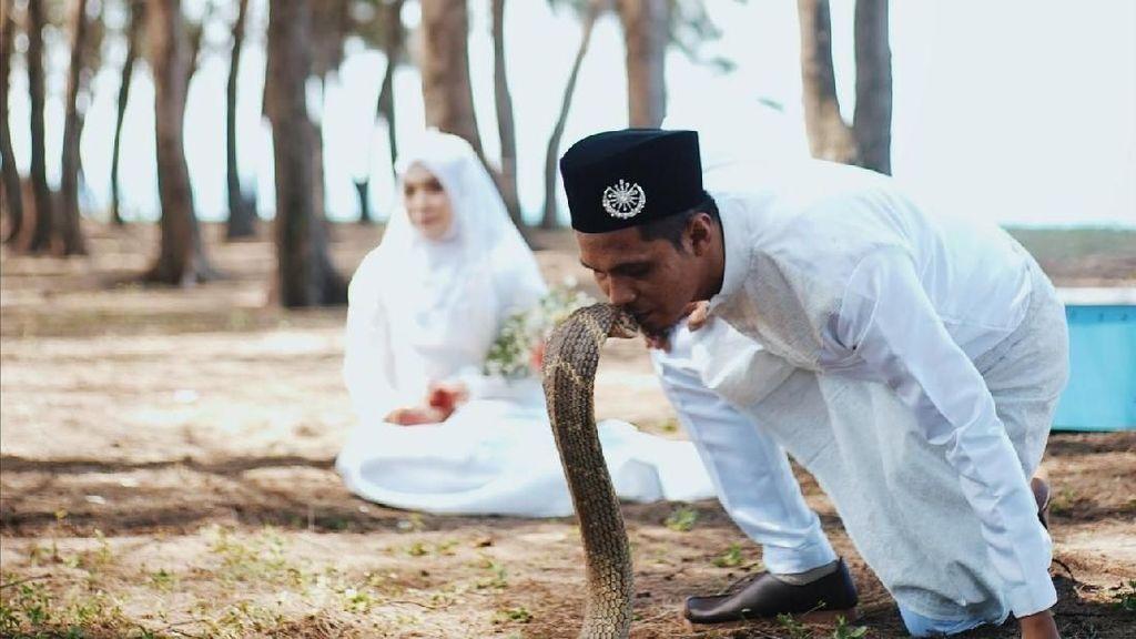 Potret Pasangan Viral yang Buat Foto Pernikahan dengan Ular King Kobra