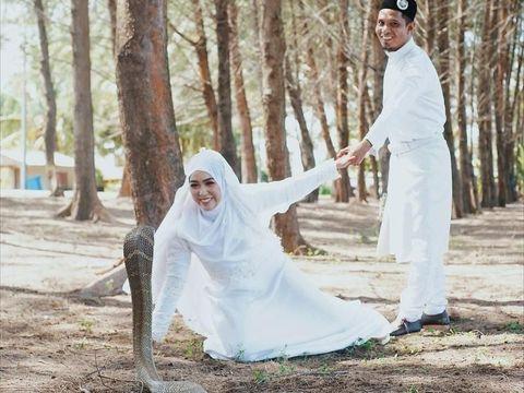 Foto pernikahan pasangan dengan ular king kobra