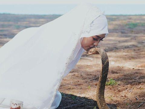 Ngeri! Foto Pernikahan Pasangan dengan Ular King Kobra Ini Jadi Viral