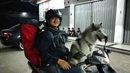 Naik Motor Jakarta-Yogya Bersama Anjing dan Kucing