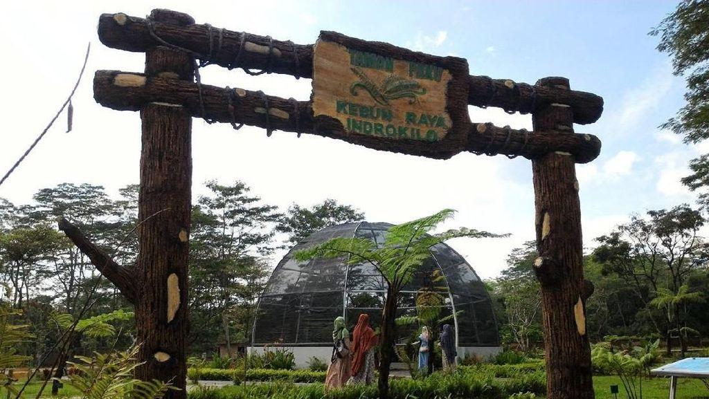 Foto: Boyolali Ternyata Punya Kebun Raya Cantik Lho!