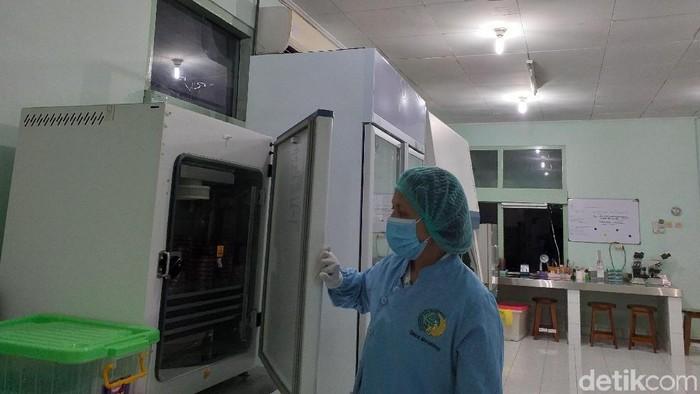 Laboratorium canggih di RSUP Sanglah. Foto: Khadijah Nur Azizah/detikHealth