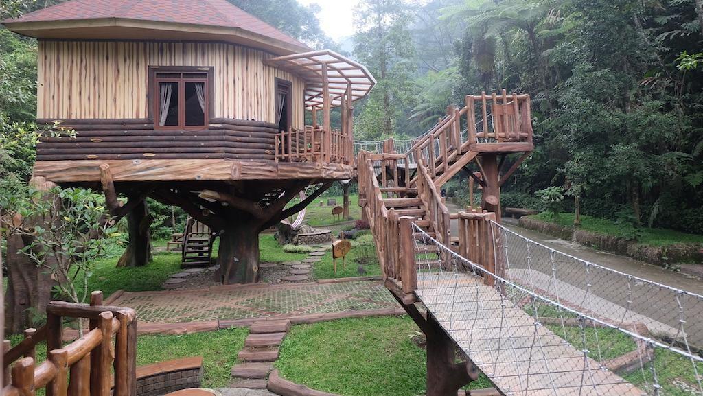 Keren! Ada Rumah Pohon yang Dilengkapi Perosotan di Puncak Bogor
