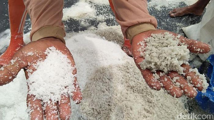 Para petani garam di Rembang Jawa Tengah melakukan panen terakhir karena sudah masuk musim hujan.