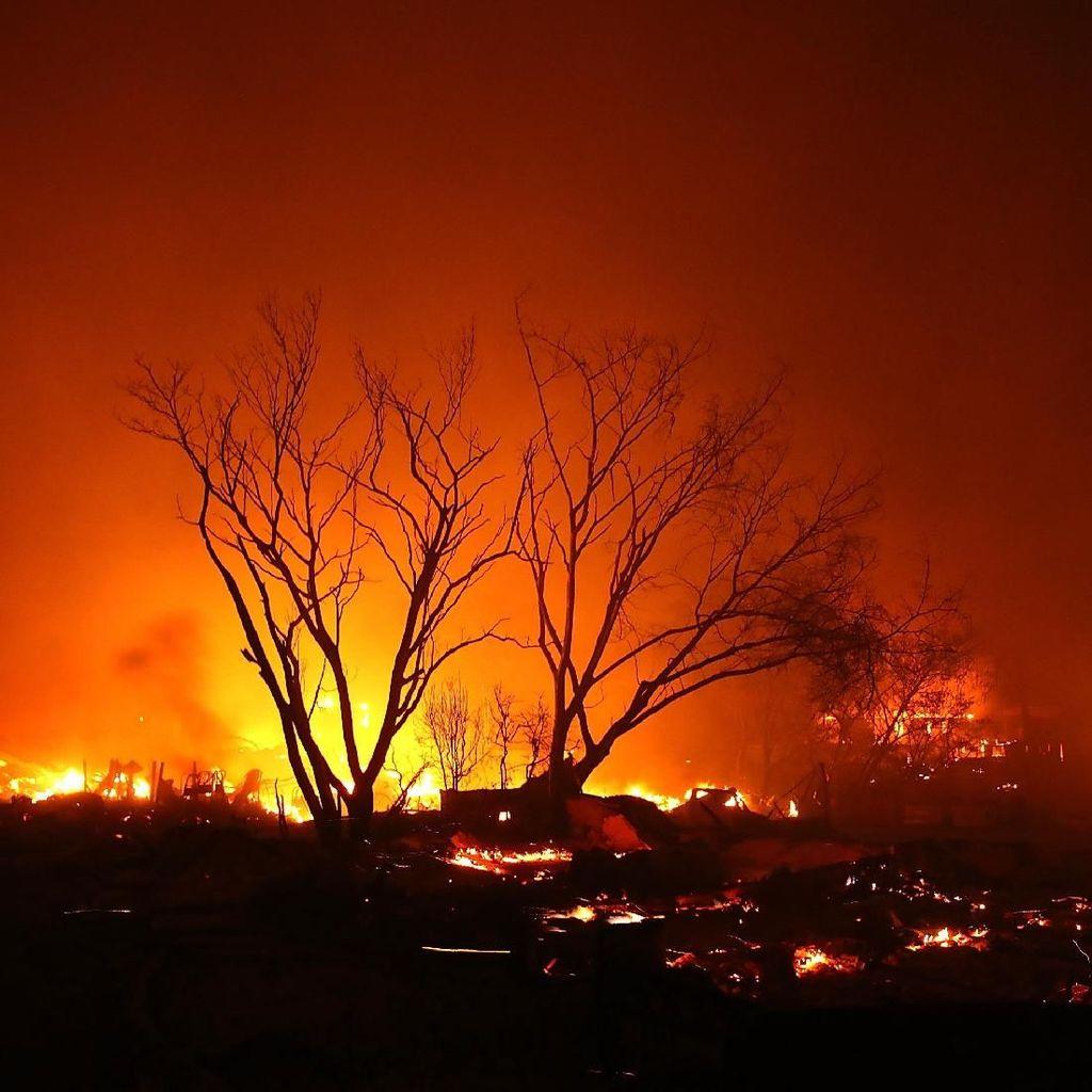 Kebakaran Lahan Gambut di Kalbar Meluas Capai 80 Hektare