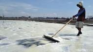 Garam Lokal Bakal Diserap 1,5 Juta Ton