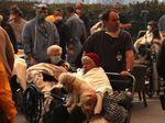 Hewan Juga Dievakuasi Imbas Kebakaran California