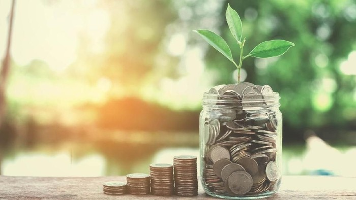 business concept money of glass and growht small tree