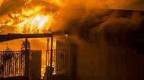 Kebakaran Hutan California: Jumlah Korban Tewas Jadi 25 orang