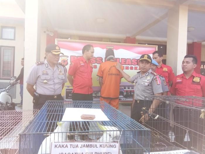 Polres Majalengka mengungkap praktik perdagangan satwa dilindungi. (Foto: dok. Polres Majalengka)