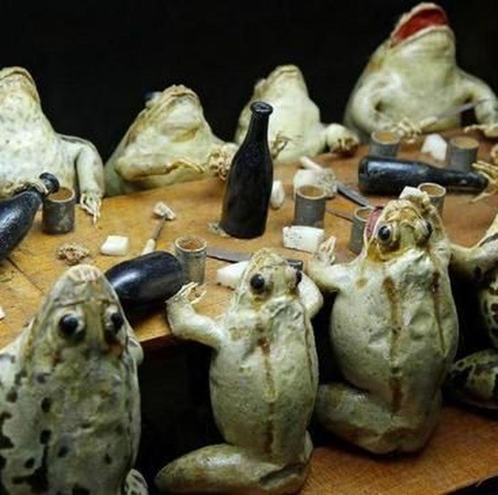Foto: Museum Kodok yang Berbentuk Diorama Lucu
